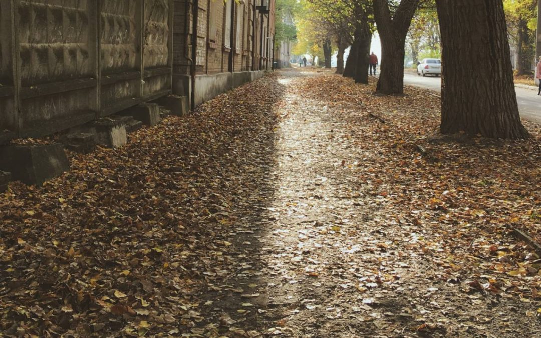 image of sidewalk covered in leaves