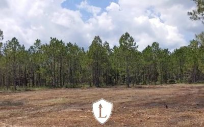 Ministry Update – Legacy House Ranch